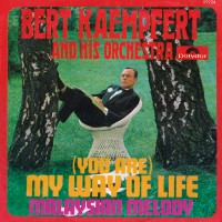 Vinyl-Single-Selection (1958–1969): Single 19 (1968)